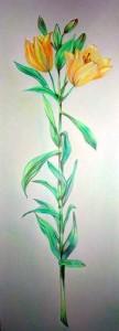 kwiatn-juneo